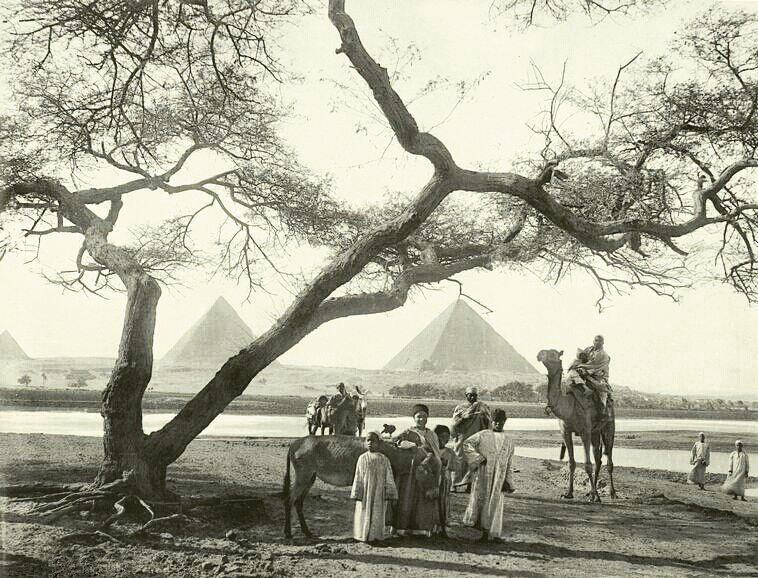 سال 1895 میلادی