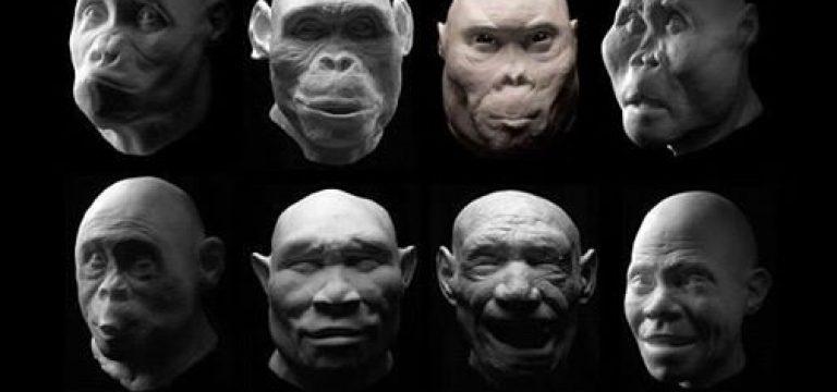 شکل صورت ما، حاصل دعواهای صدهزار ساله است!