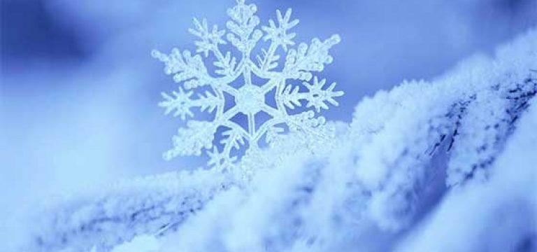 چرا وقتی برف می بارد دنیا ساکت تر می شود؟