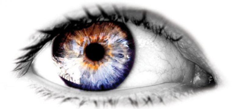 چشم انسان چند مگاپیکسل است ؟