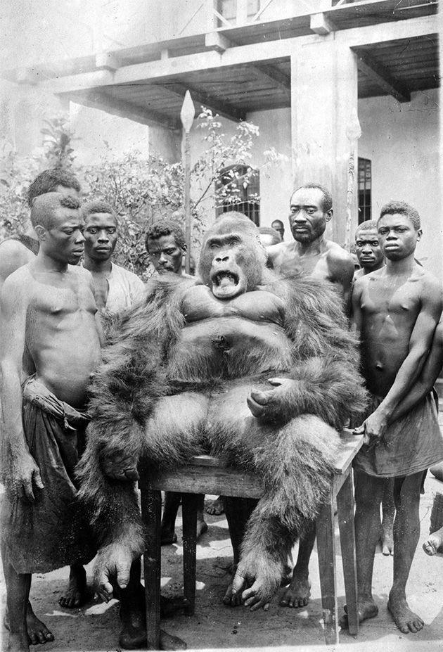 سال 1925 میلادی