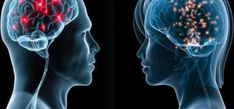 آیا واقعا مغز زنان کوچکتر از مغز مردان است؟