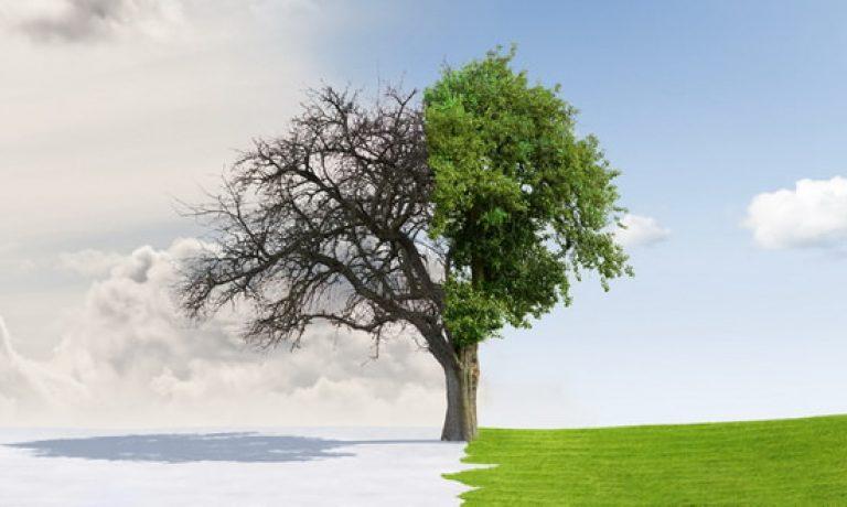 اعتدال بهاری یا لحظه تحویل سال چیست و چگونه رخ میدهد؟