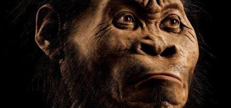 انسان در شرق آفریقا پدید آمد